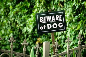 Beware of dog sign.